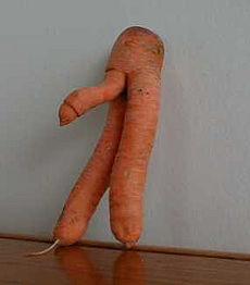 carrot-penis