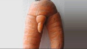 carrot-penis02