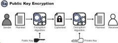 cryptofig05a